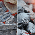 Lump Charcoal vs Briquettes - How to Choose the Right Fuel for Your Grill or Smoker