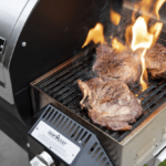 Best Pellet Grills for Searing - Our Top Choices and Buyer's Guide